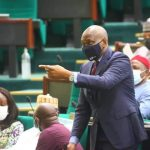 Minority Leader House of Representatives, Hon. Ndudi Elumelu.