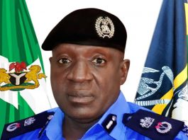 Delta State Police Commissioner, CP Ari Muhammed Ali.